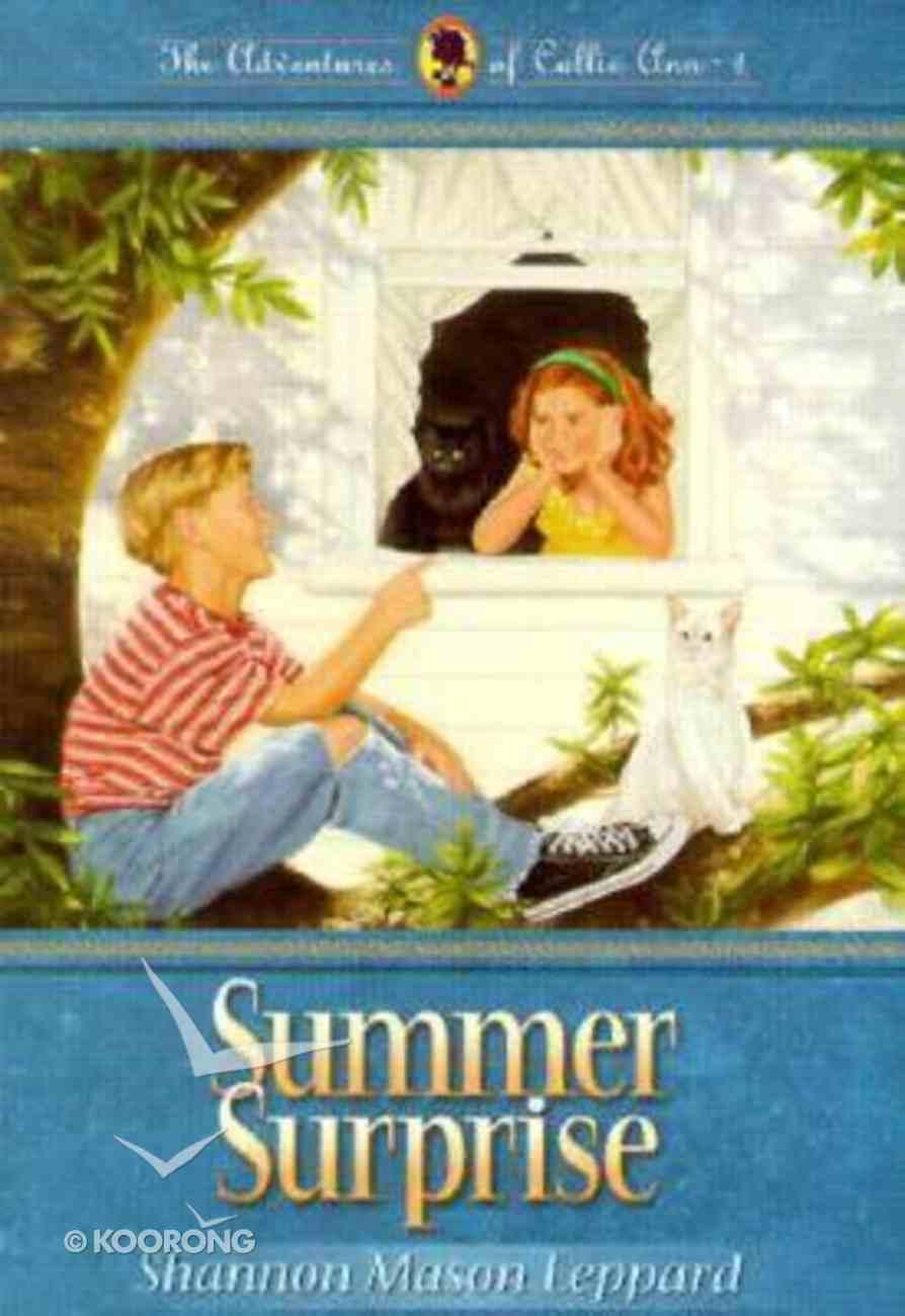 Summer Surprise (#01 in Callie Ann Series) Paperback