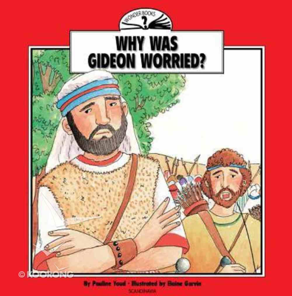 I Wonder Why Was Gideon Worried (I Wonder Series) Paperback