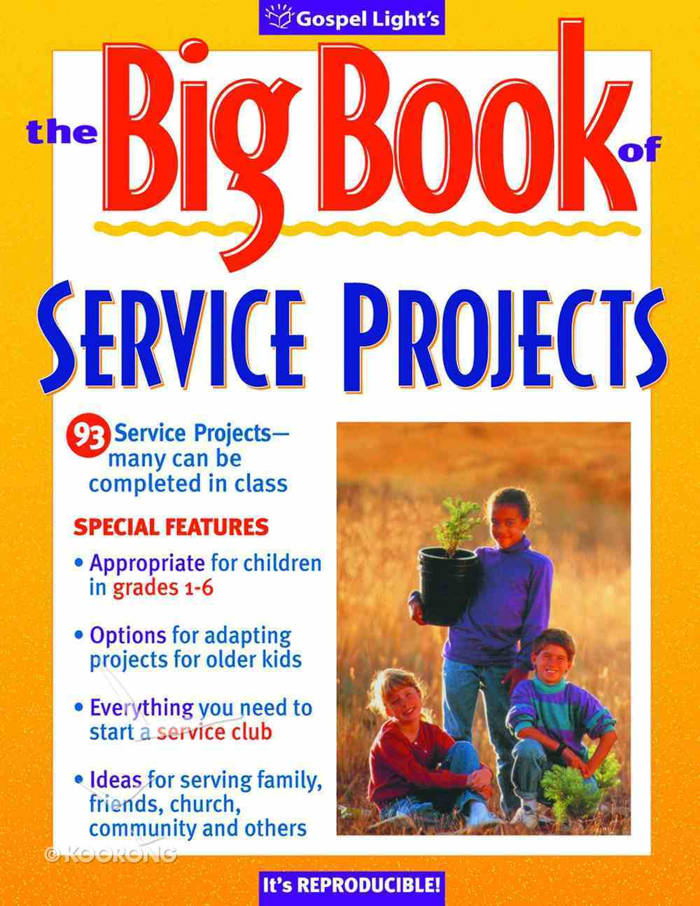 The Big Book of Service Projects Paperback