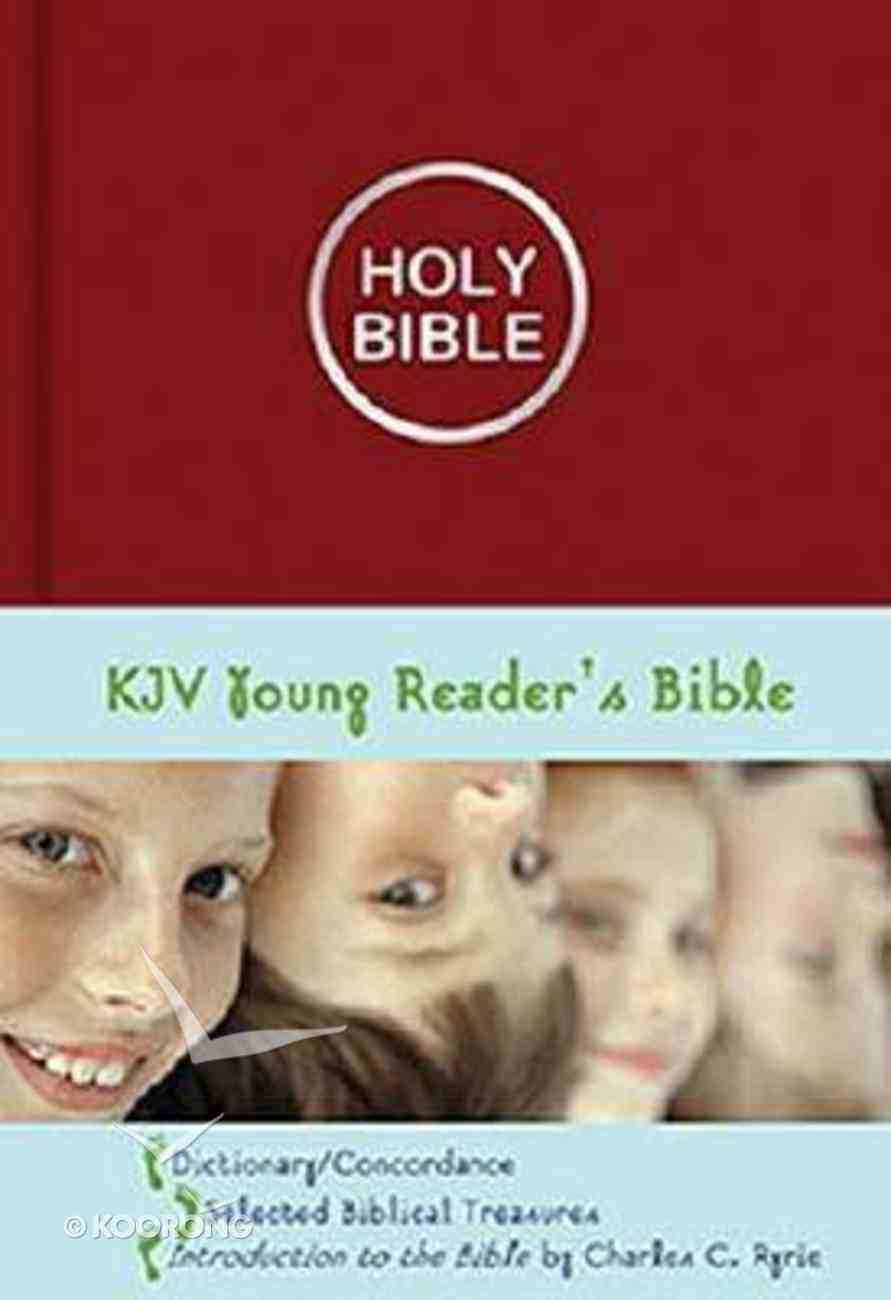 KJV Young Reader's Illustrated Burgundy Imitation Leather