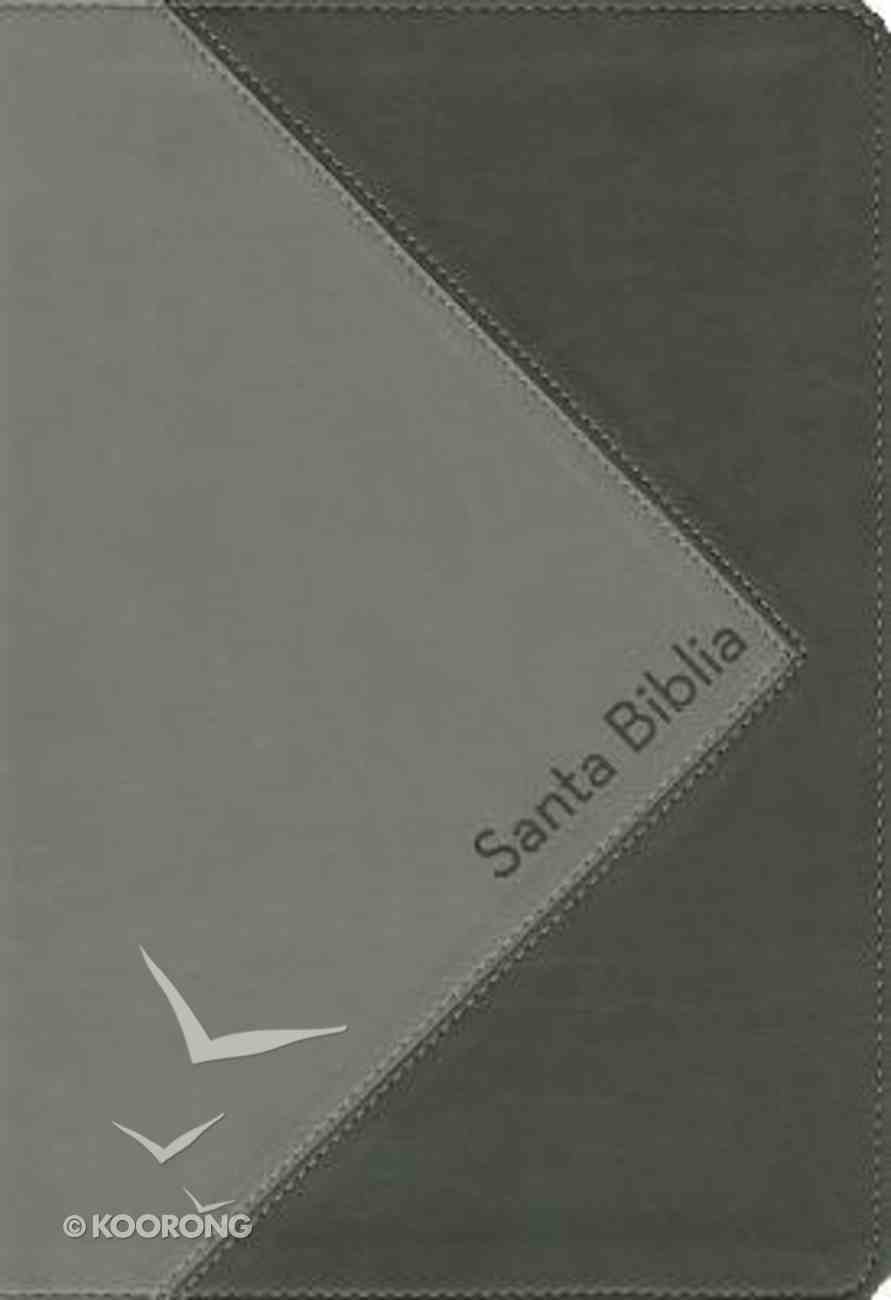 Rvr1960 Biblia De Referencia Thompson Gray/Black (Red Letter Edition) (Thompson Chain Reference) Imitation Leather