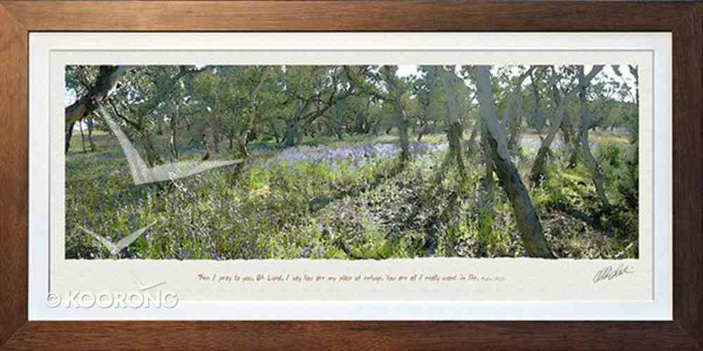 Framed Photo: Flinders Ranges, Psalm 142:5 Plaque