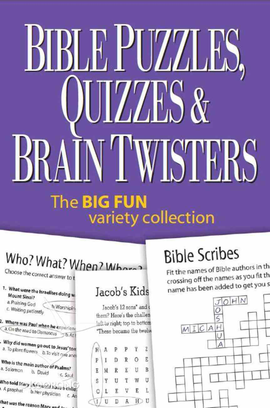 Bible Puzzles, Quizzes and Brain Twisters Spiral
