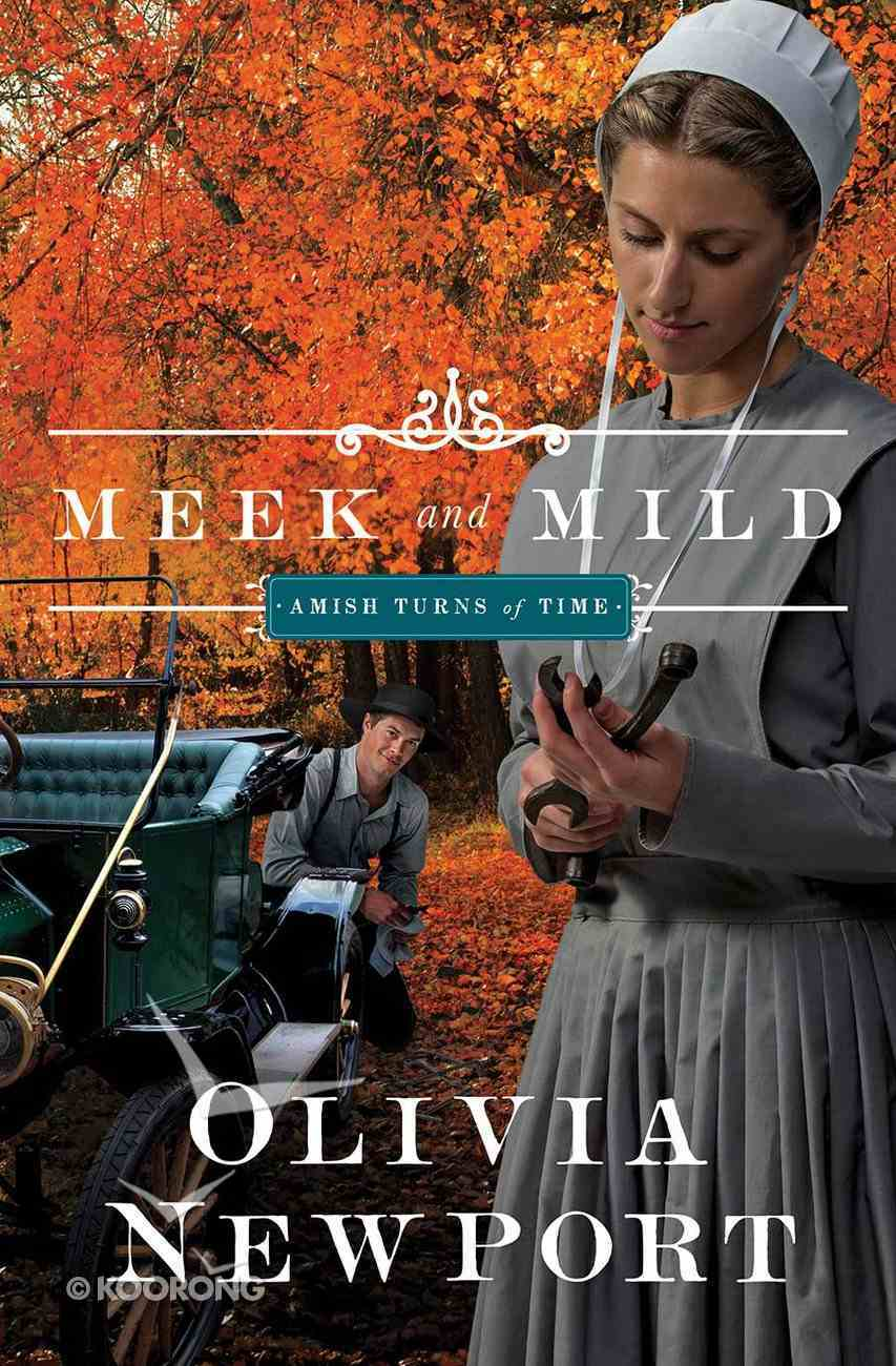 Meek and Mild (#02 in Amish Turns Of Time Series) Paperback