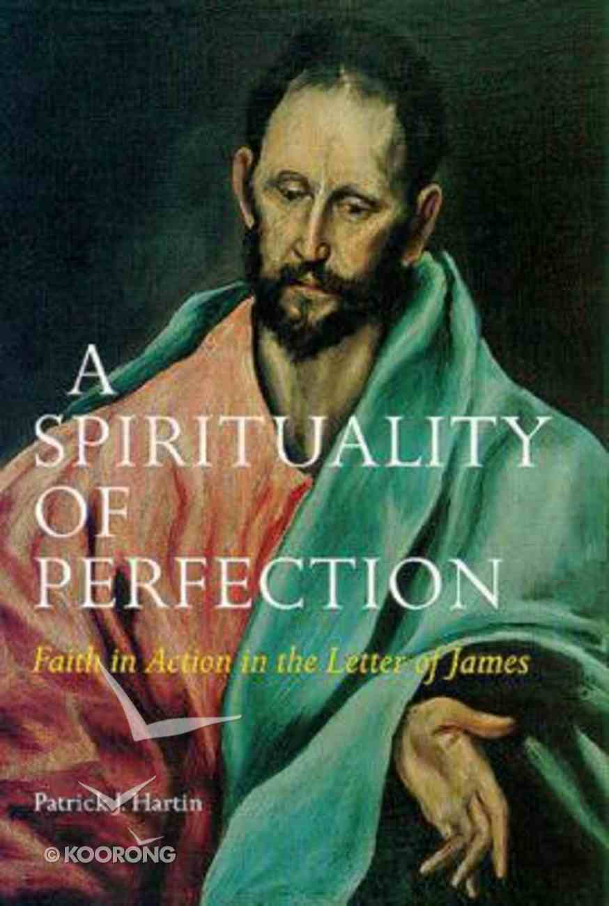 A Spirituality of Perfection Paperback