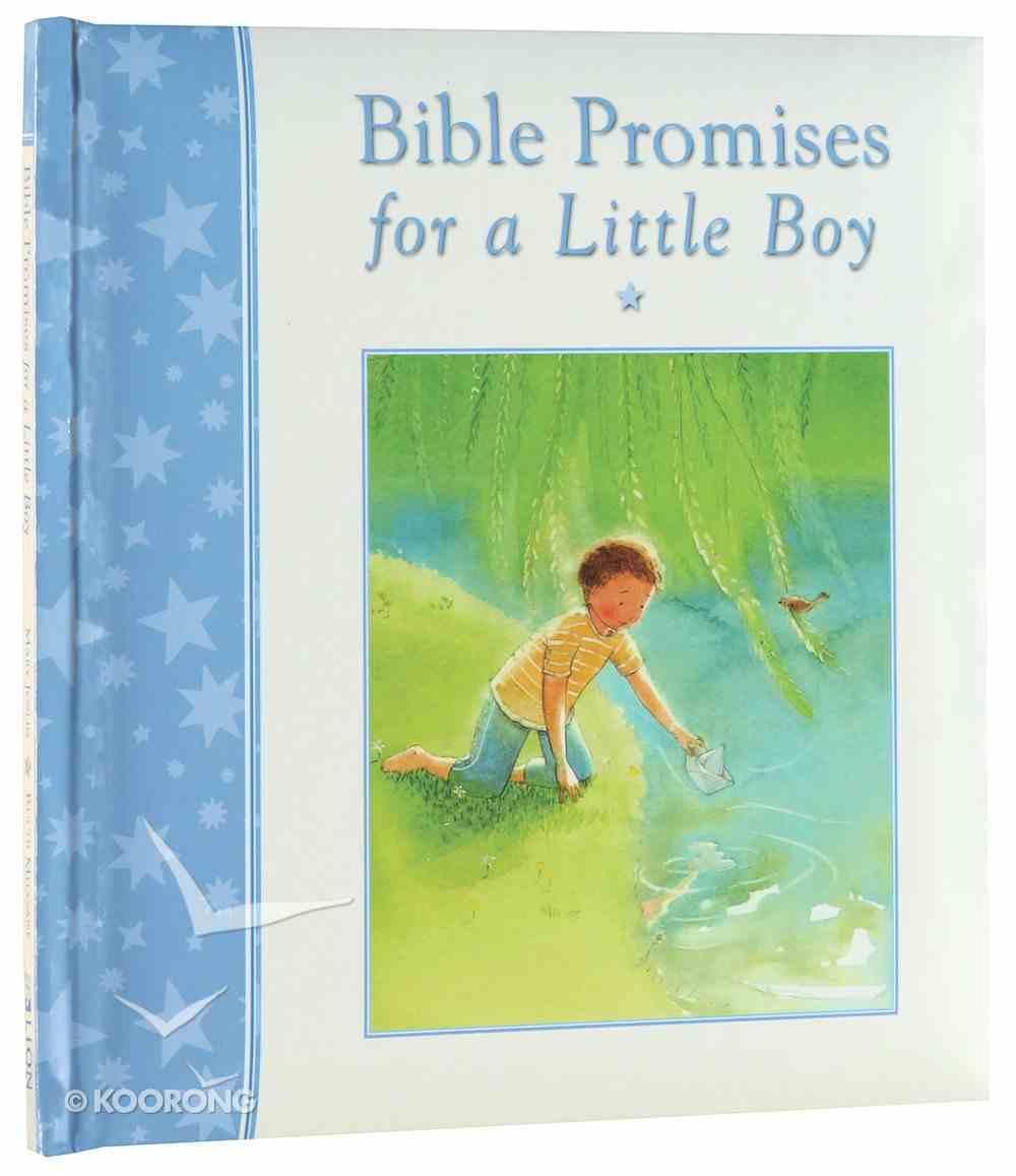 Bible Promises For a Little Boy Hardback
