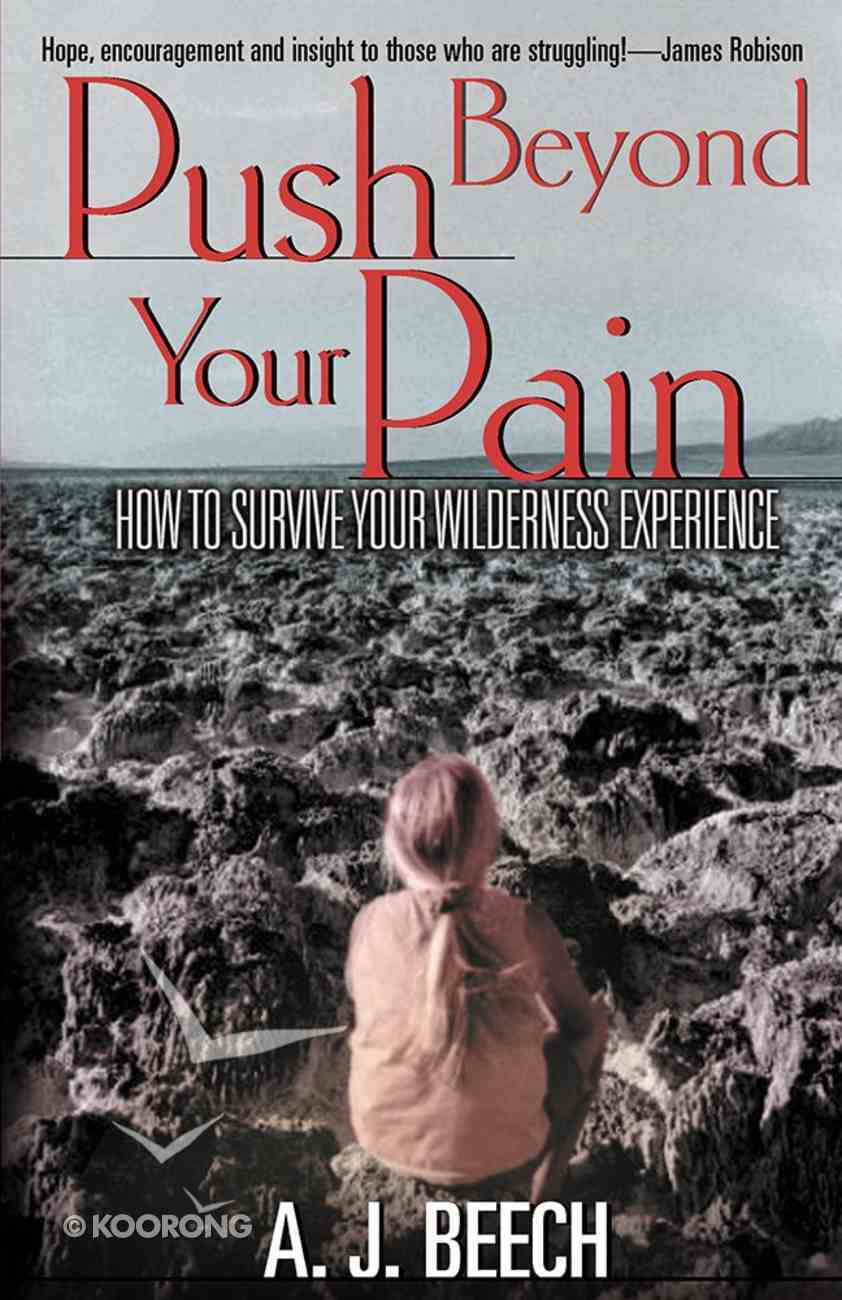 Push Beyond Your Pain Paperback