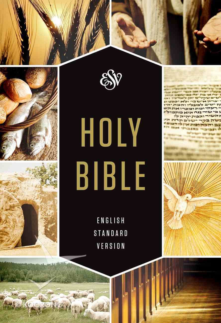ESV Holy Bible Textbook Edition (Black Letter Edition) Hardback