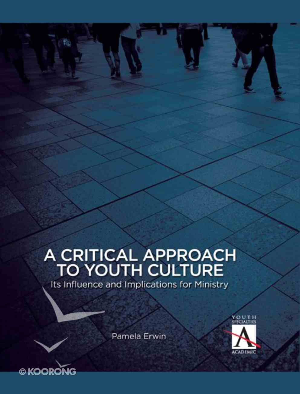 A Critical Approach to Youth Culture eBook