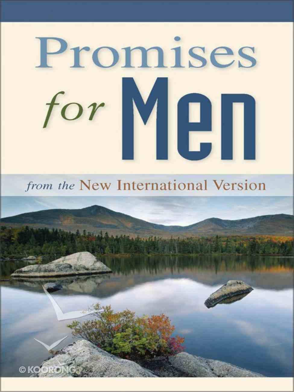 Promises For Men eBook
