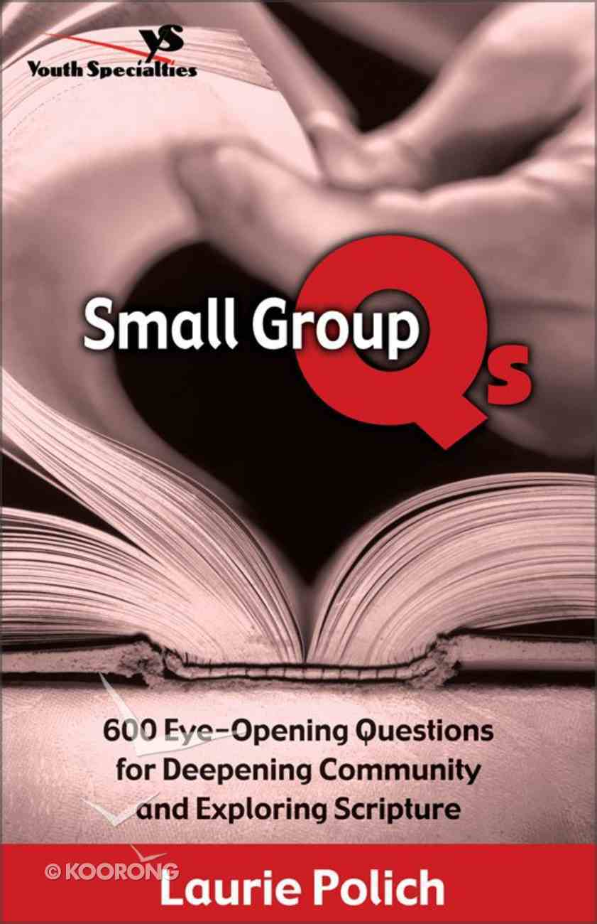 Small Group Q's eBook