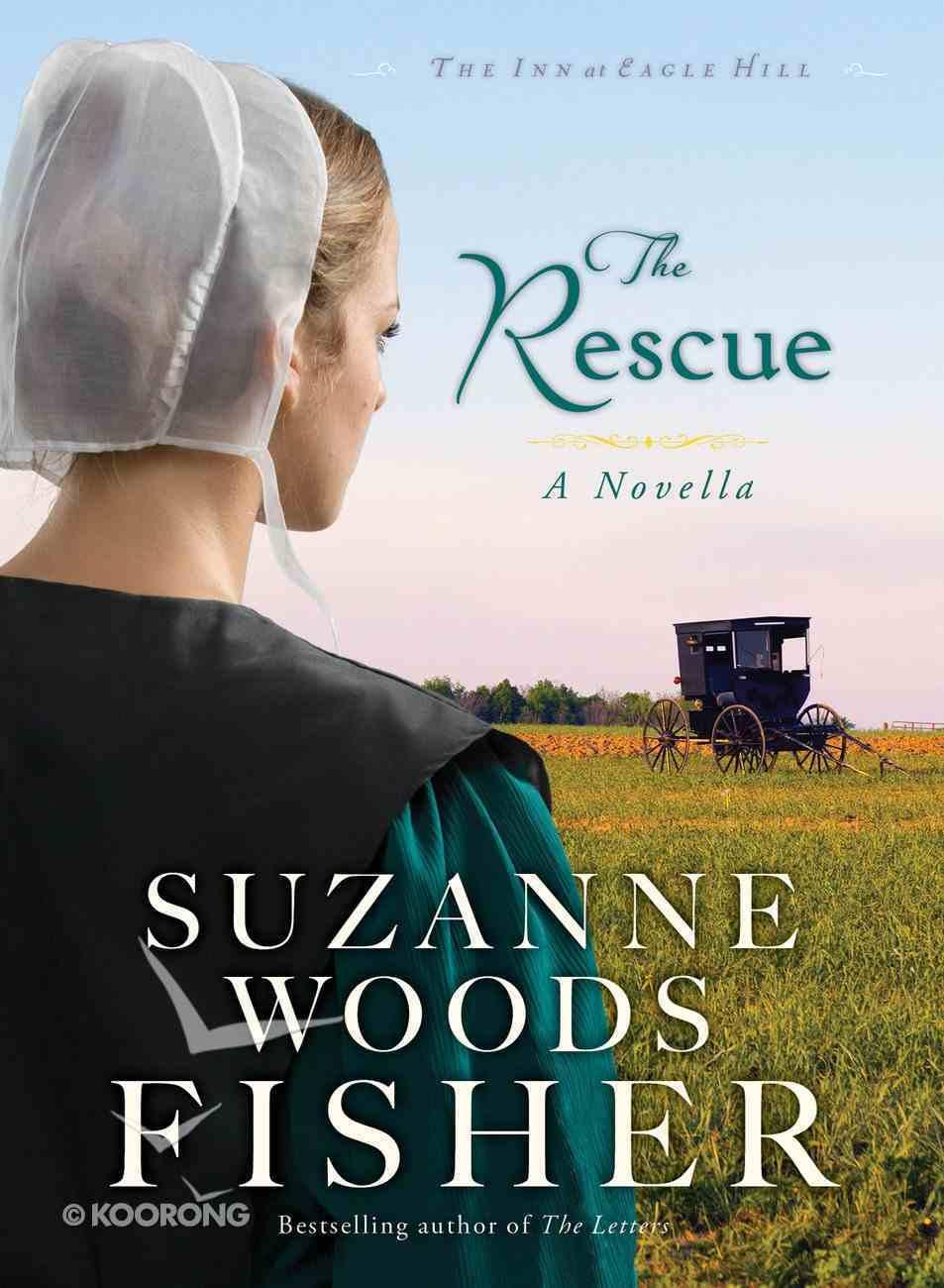 The Rescue (Short Novella) (The Inn At Eagle Hill Series) eBook