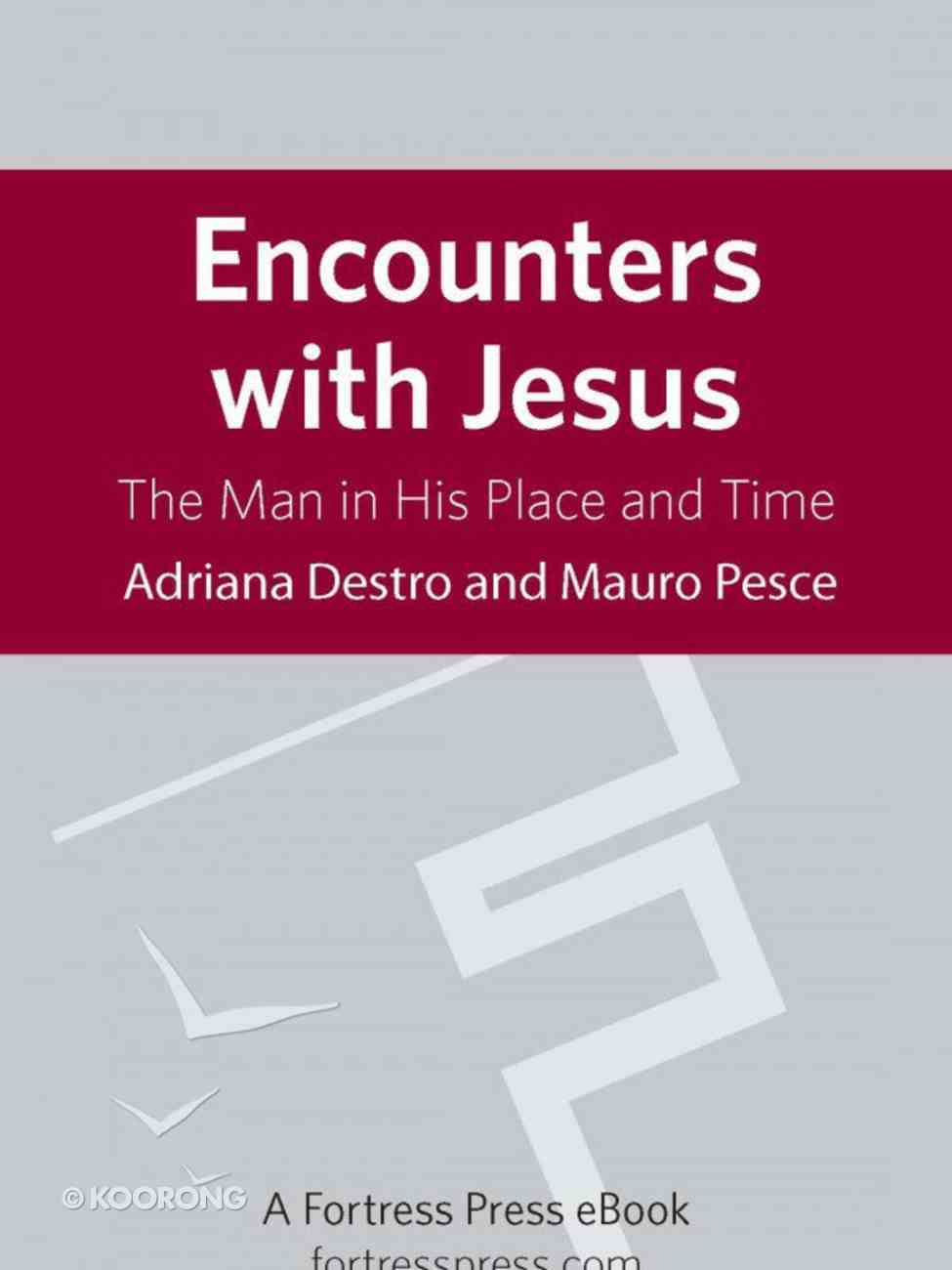 Encounters With Jesus eBook