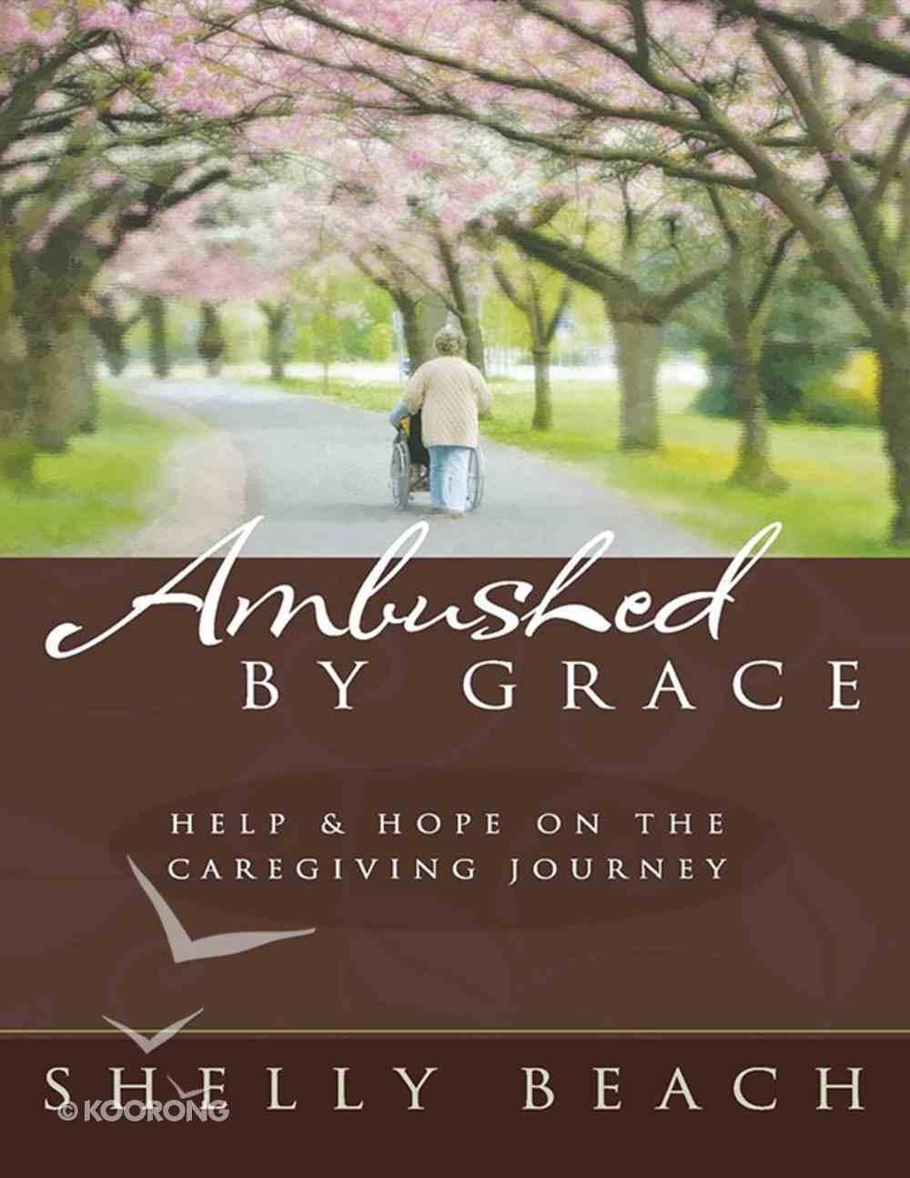 Ambushed By Grace eBook