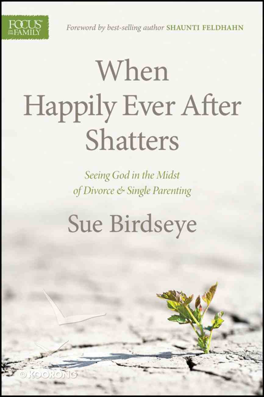 When Happily Ever After Shatters eBook