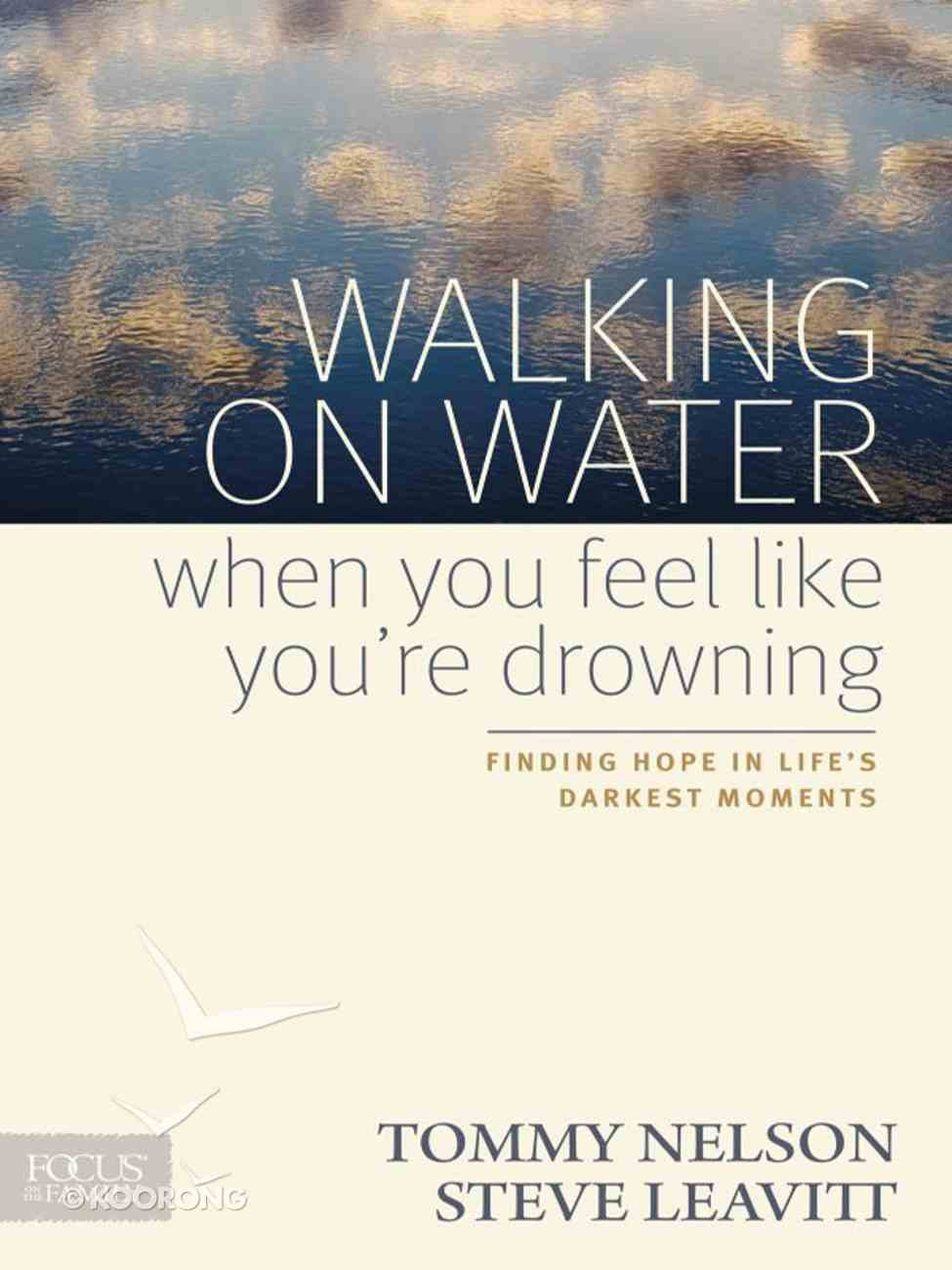 Walking on Water When You Feel Like You're Drowning eBook