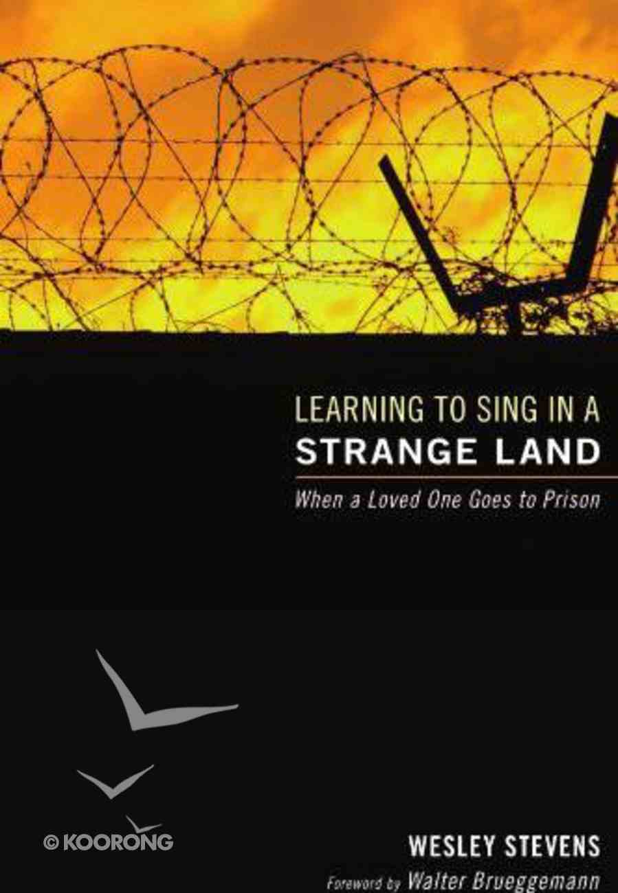 Learning to Sing in a Strange Land eBook