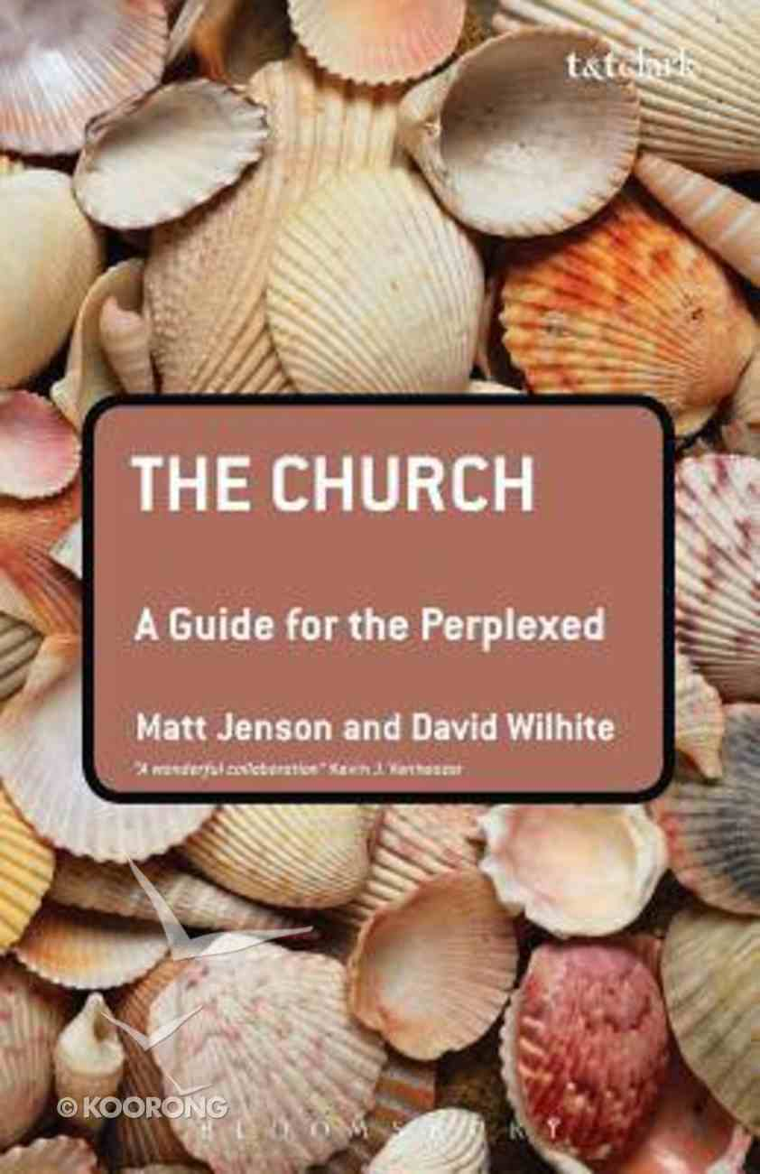 The Church (Guides For The Perplexed Series) Paperback