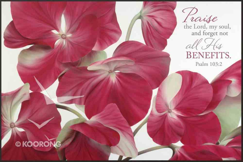 Mounted Print: Praise the Lord My Soul, Psalm 103:2, in the Pinks Plaque