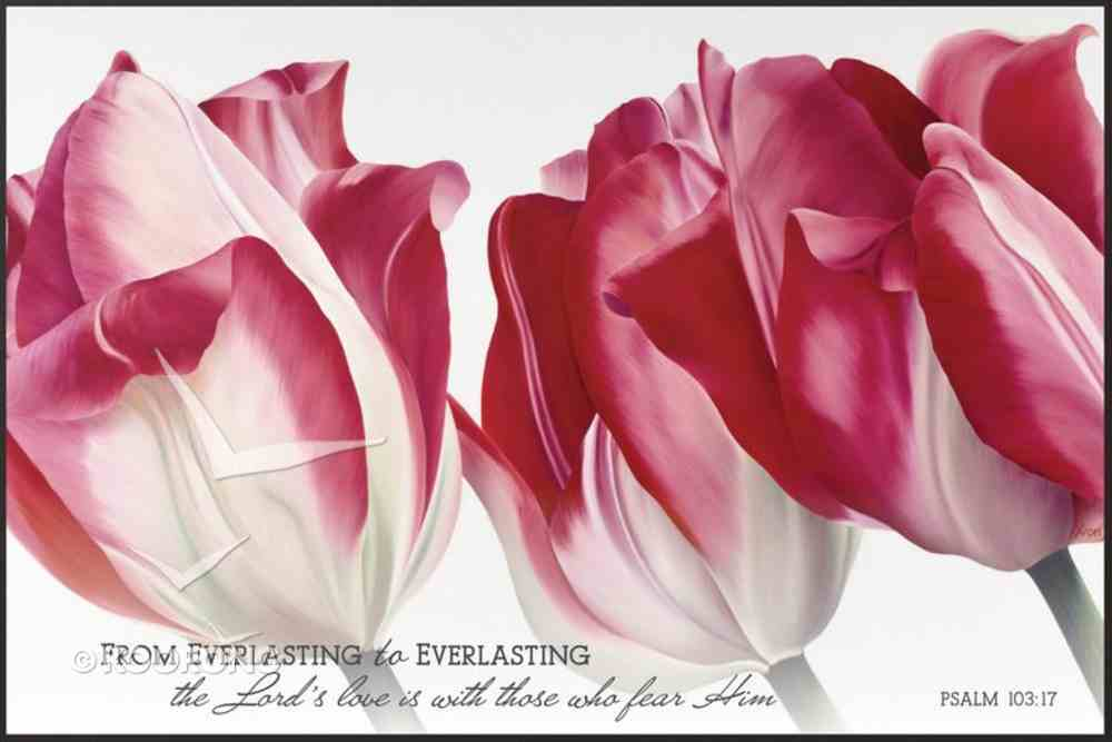 Mounted Print: From Everlasting to Everlasting, Psalm 103:17, Pink Tulips Plaque