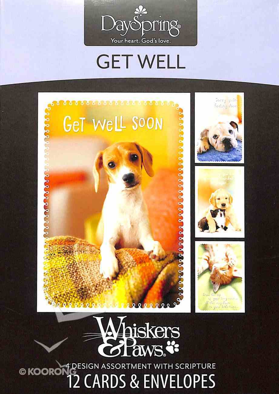 Boxed Cards Get Well: Whiskers & Paws Box