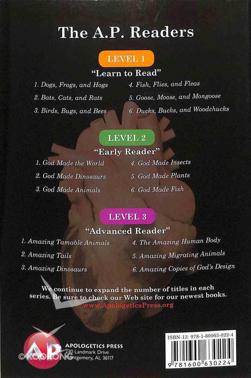 Amazing Human Body Designed By God (A P Reader Series) Paperback