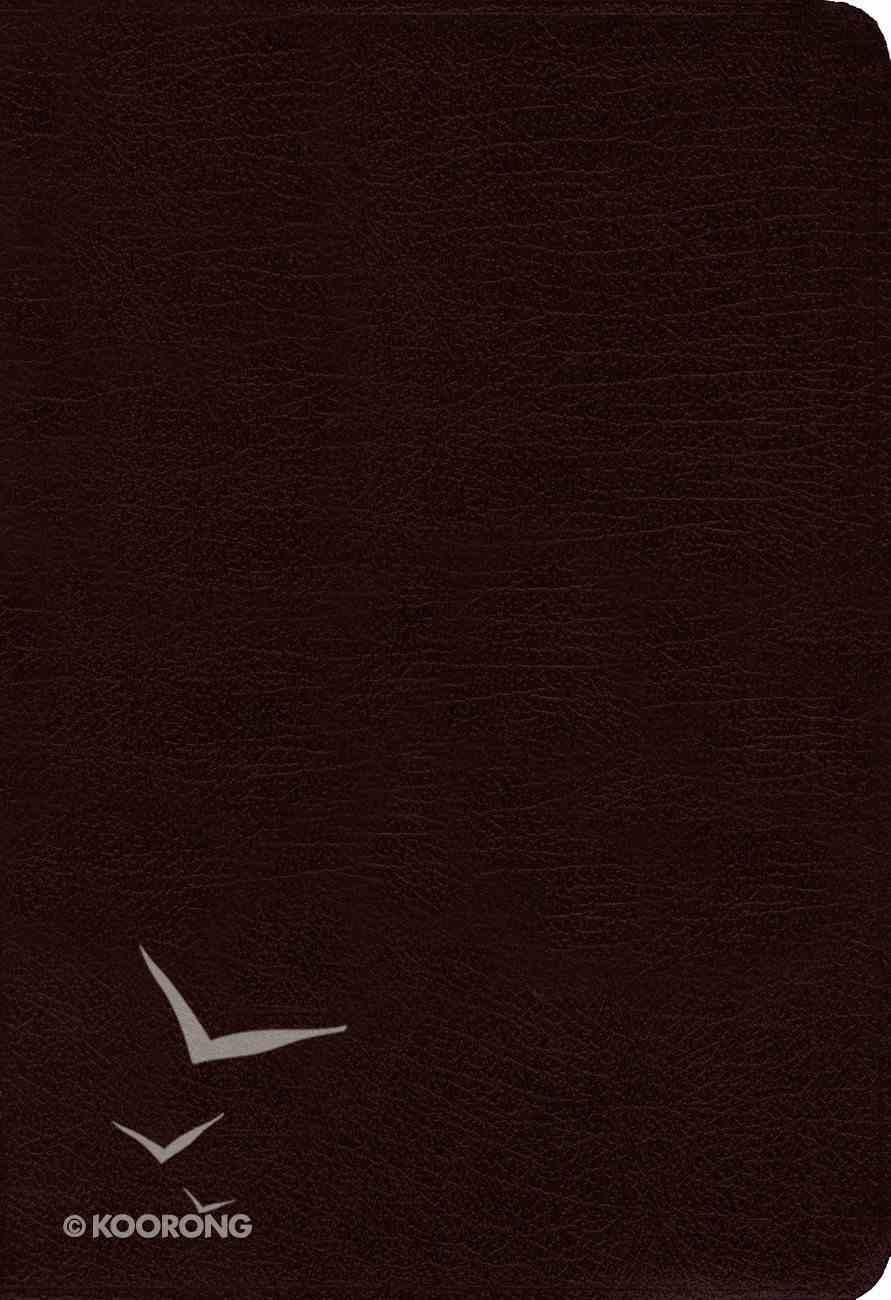 Amplified Cross-Reference Bible Burgundy Bonded Leather