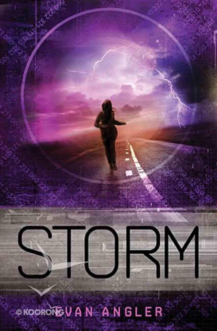 Storm (#03 in Swipe Series) Paperback