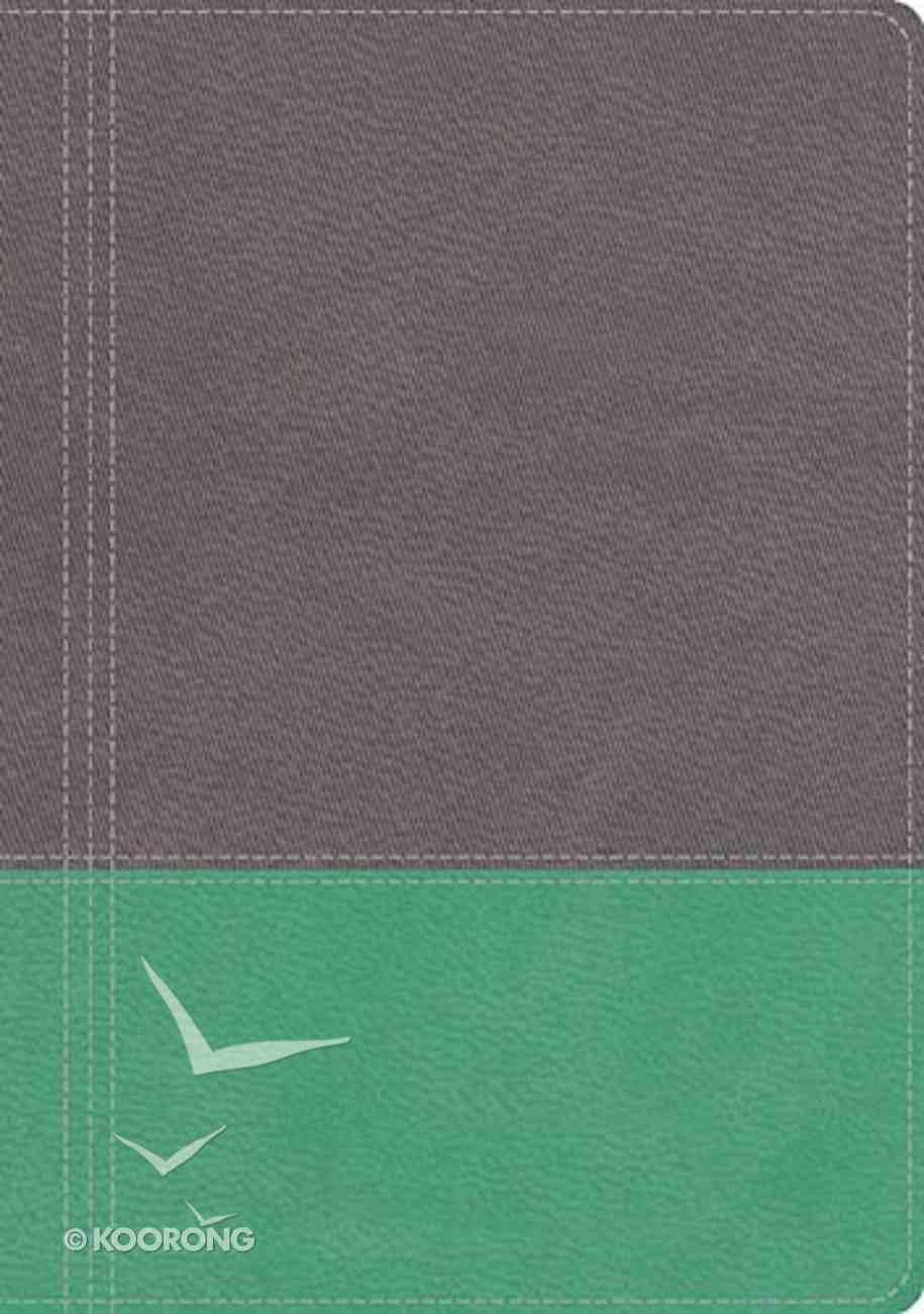 NKJV Modern Life Study Bible, the Leathersoft Dove Gray/Lagoon Green Premium Imitation Leather