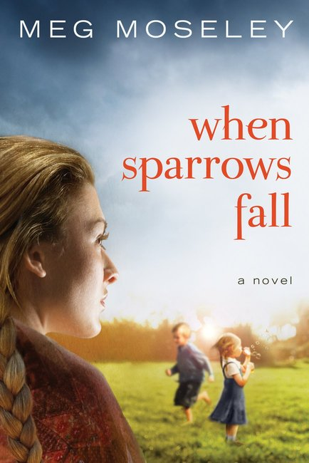 Product: When Sparrows Fall Image