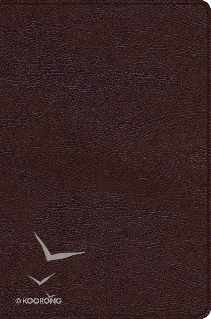 Rvr 1960 Biblia De Estudio Arco Iris Chocolate Smil Piel (Spanish) Imitation Leather