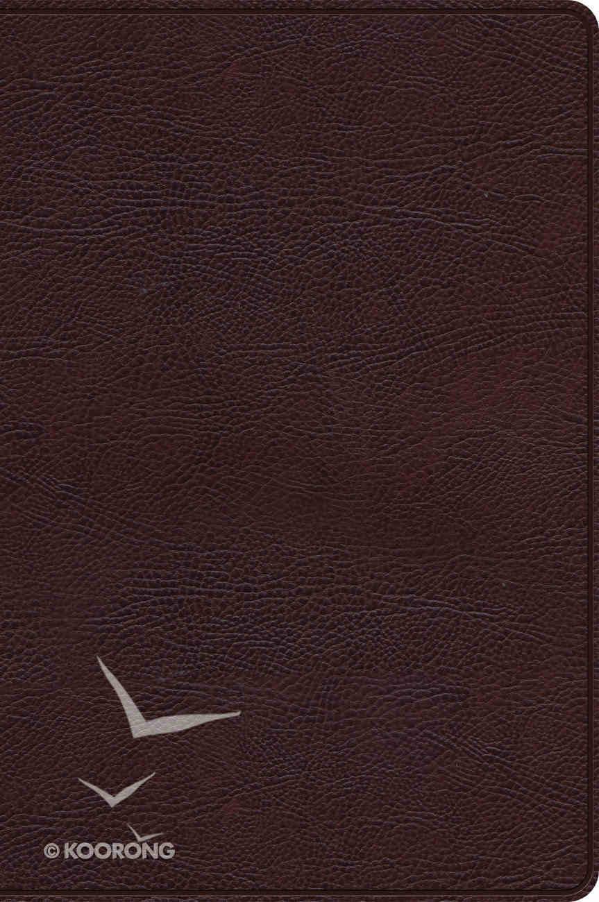 Rvr 1960 Biblia De Estudio Arco Iris Chocolate Smil Piel Con Ndice (Spanish) Genuine Leather