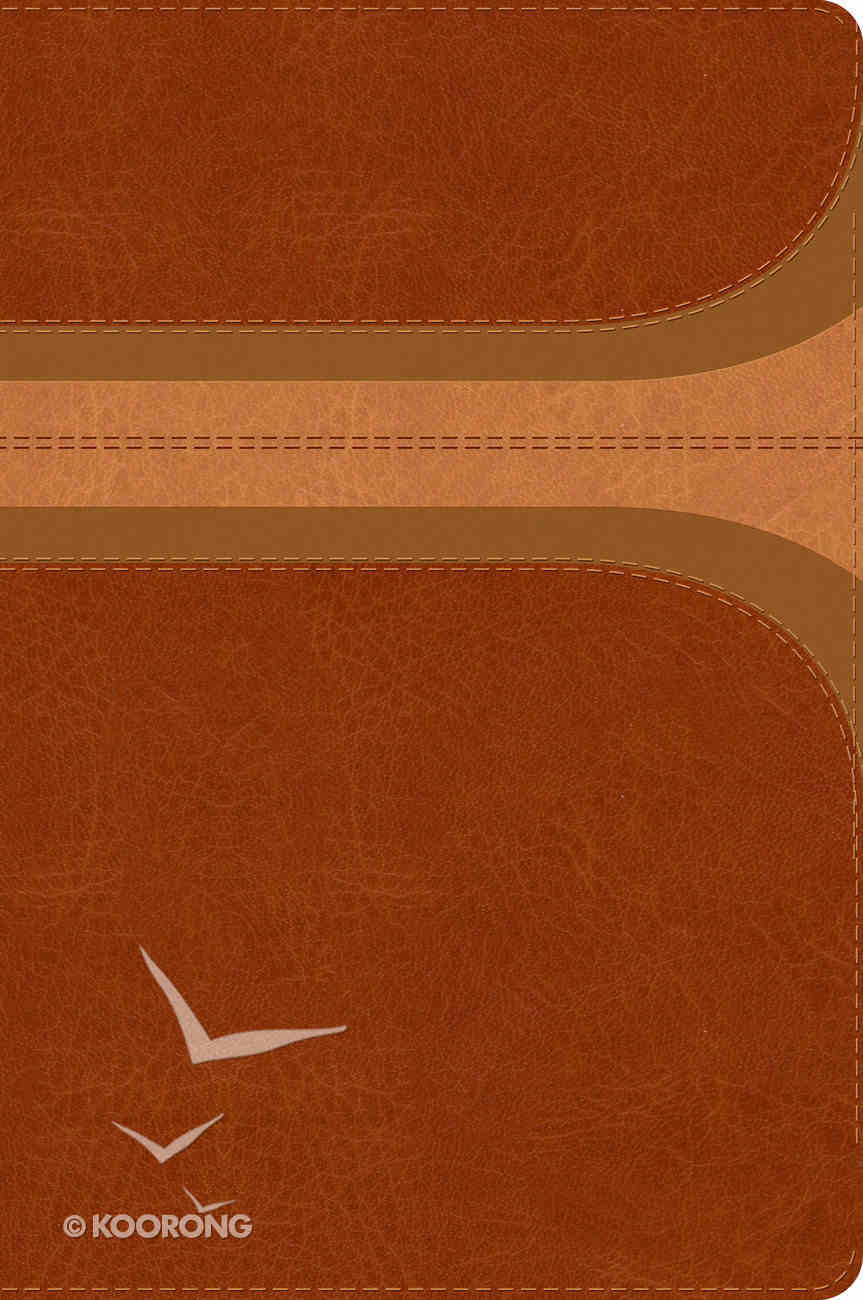 Rvr 1960 Biblia De Estudio Arco Iris Canela/Damasco Smil Piel (Spanish) Imitation Leather