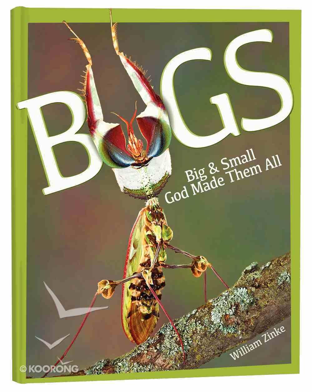 Bugs: Big & Small, God Made Them All Hardback