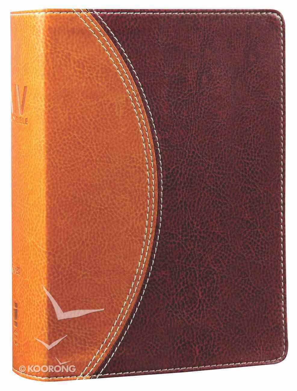 NIV Study Bible Compact Tan/Burgundy (Red Letter Edition) Premium Imitation Leather