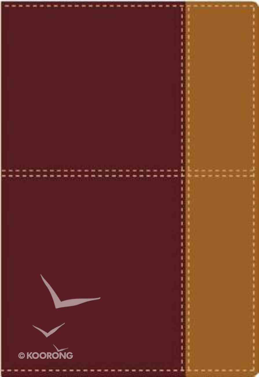 Nvi Biblia De Referencia Thompson Italian Duo-Tone Fi (Red Letter Edition) (Nvi) Imitation Leather