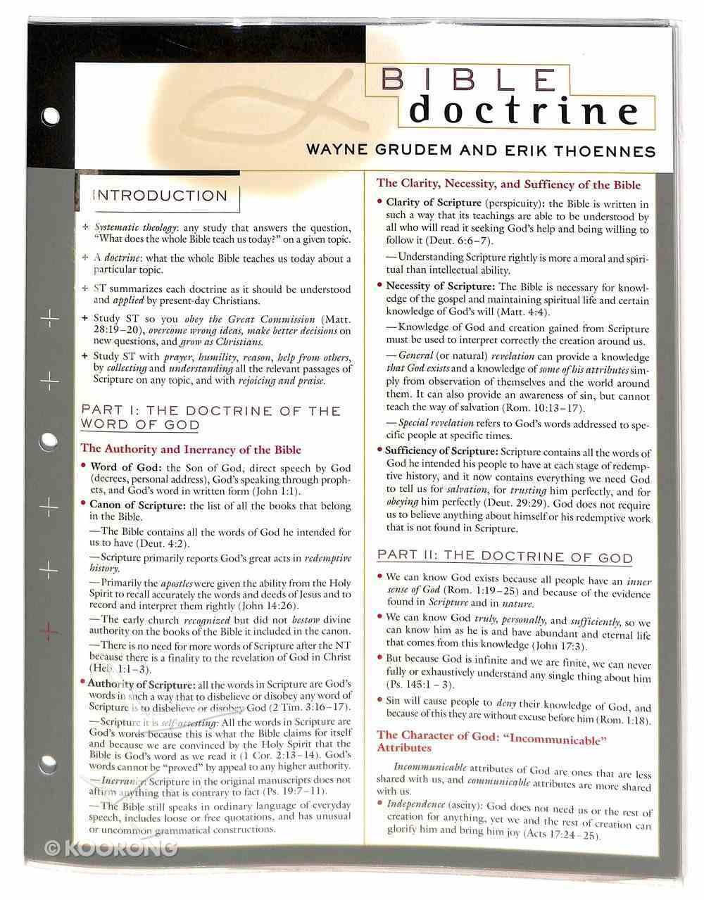 Bible Doctrine Laminated Sheet Book Other