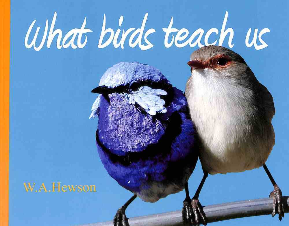 What Birds Teach Us Paperback
