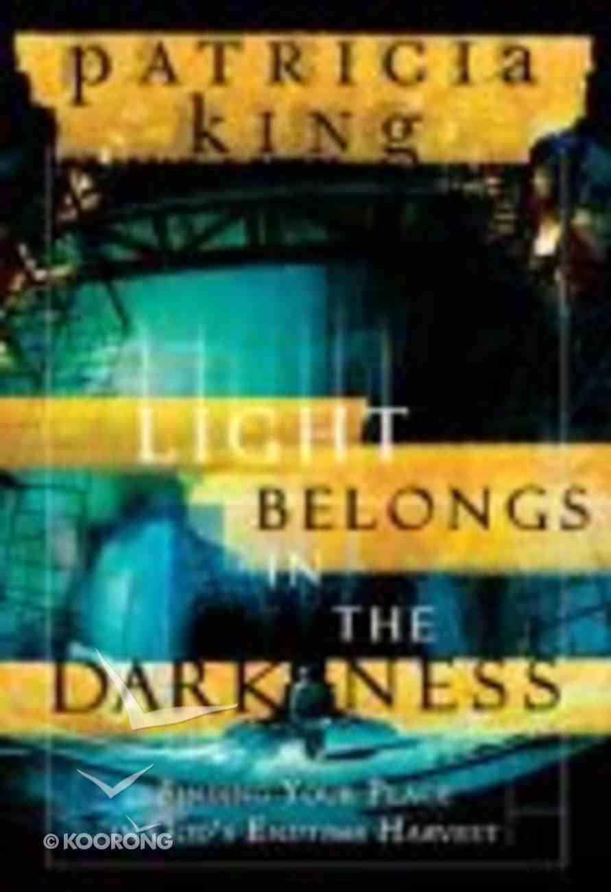 The Light Belongs in the Darkness Paperback