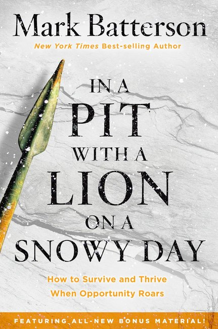 Product: In A Pit With A Lion On A Snowy Day Image