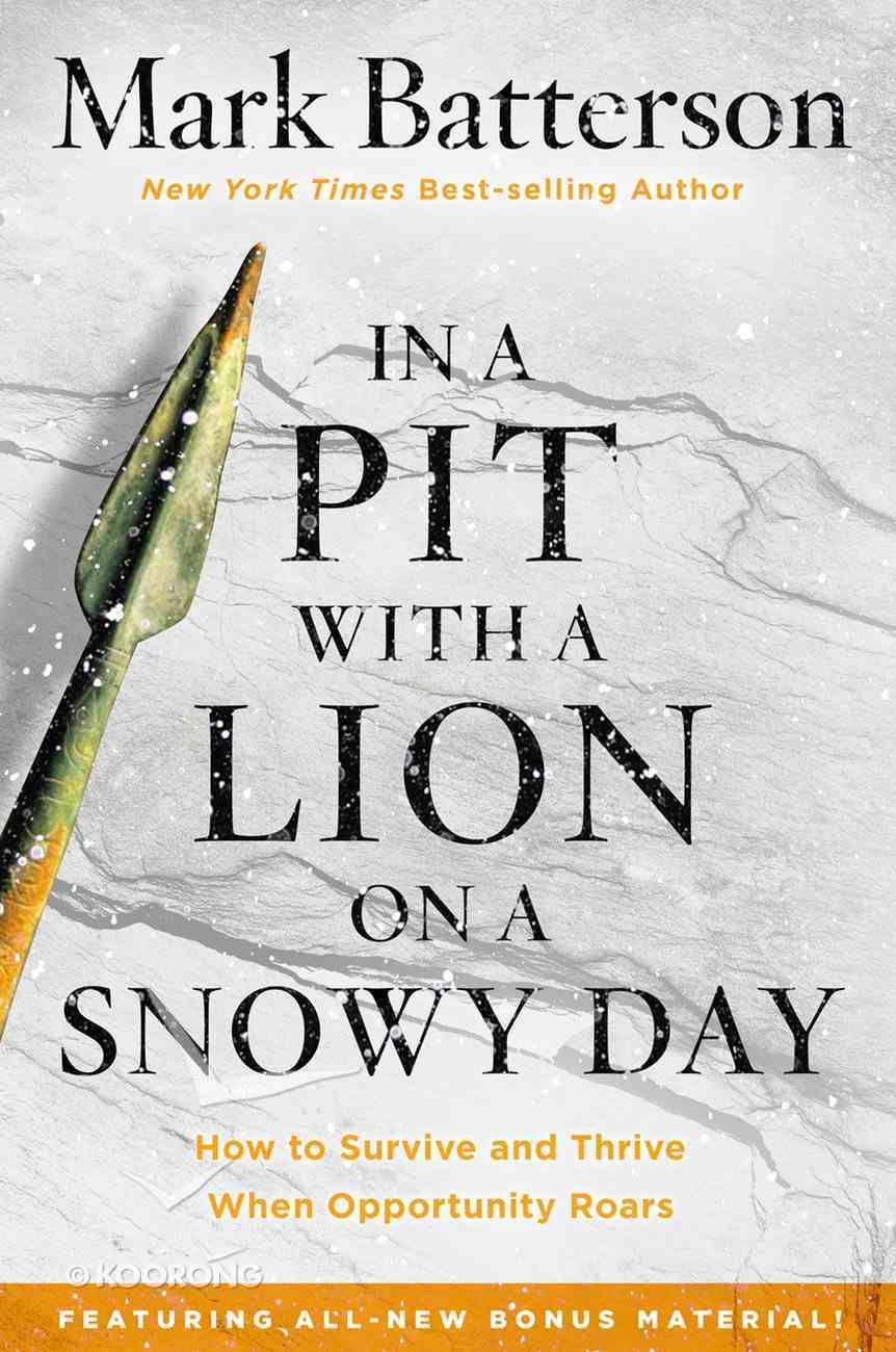 In a Pit With a Lion on a Snowy Day Paperback