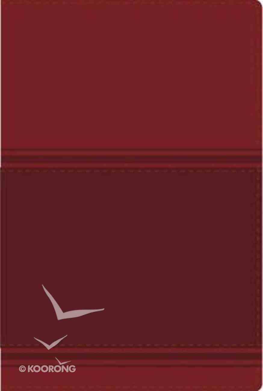 Nvi Santa Biblia Lectura Facil Large Print Burgundy (Easy Reading Bible) Imitation Leather