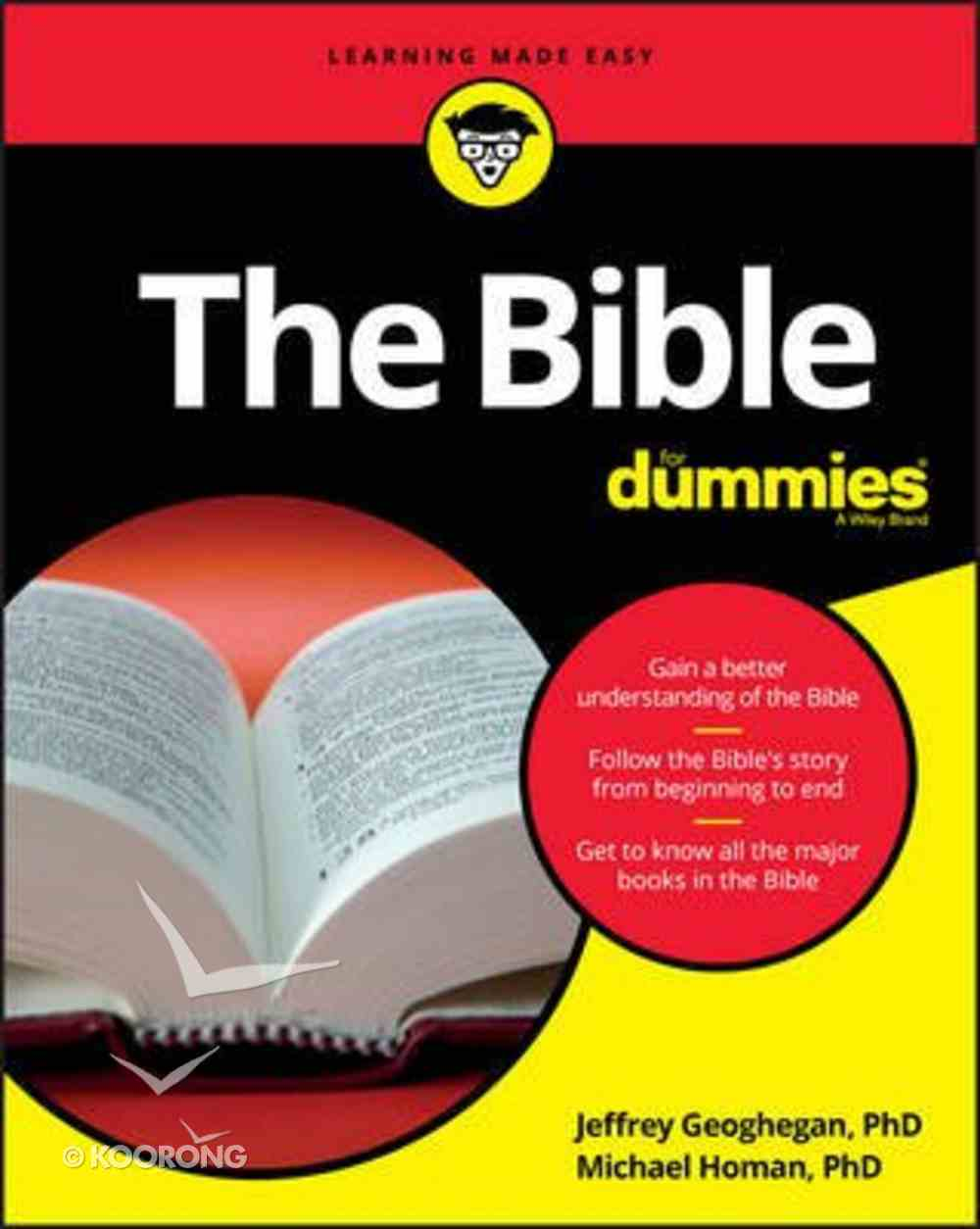 The Bible For Dummies Paperback