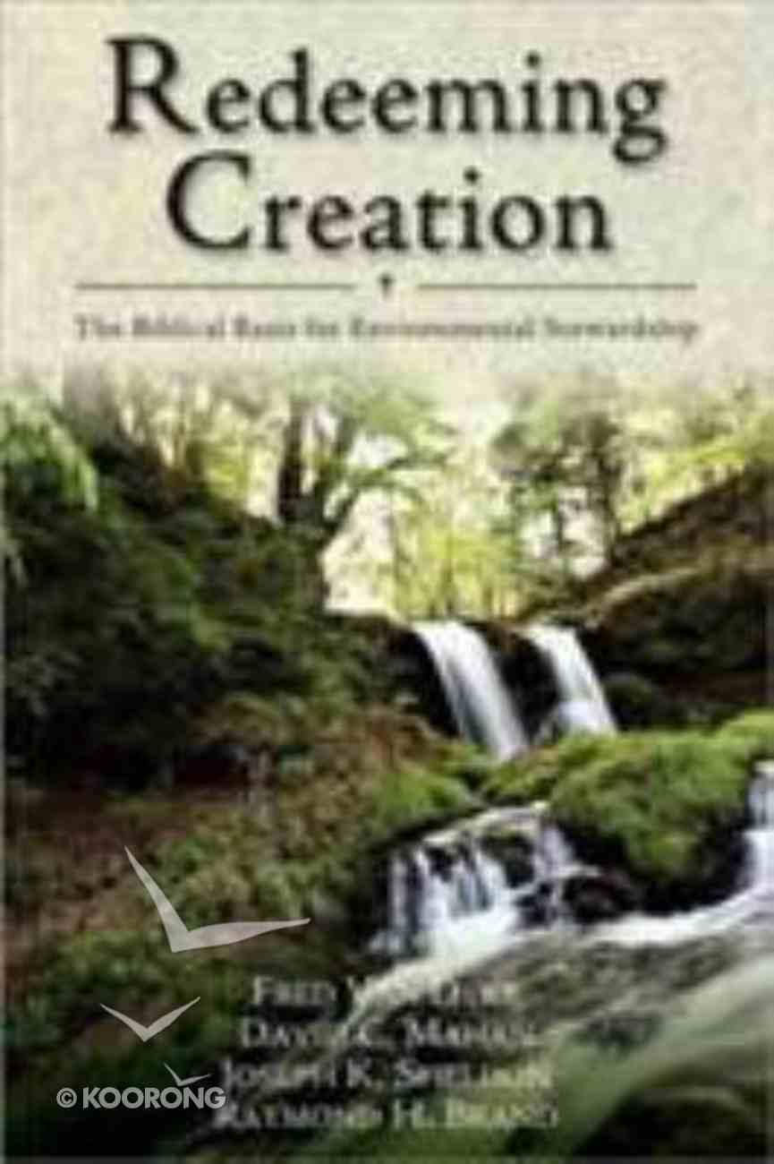Redeeming Creation Paperback