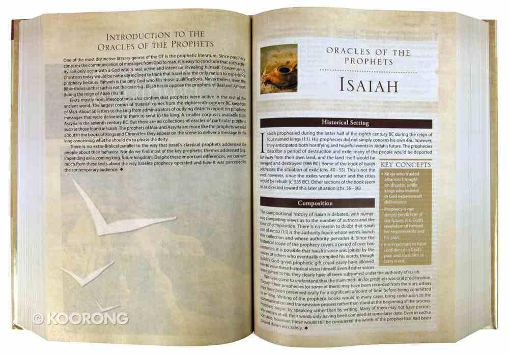 NIV Cultural Backgrounds Study Bible (Red Letter Edition) Hardback