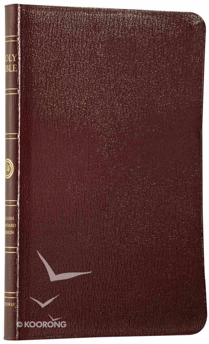 ESV Thinline Burgundy Genuine Leather