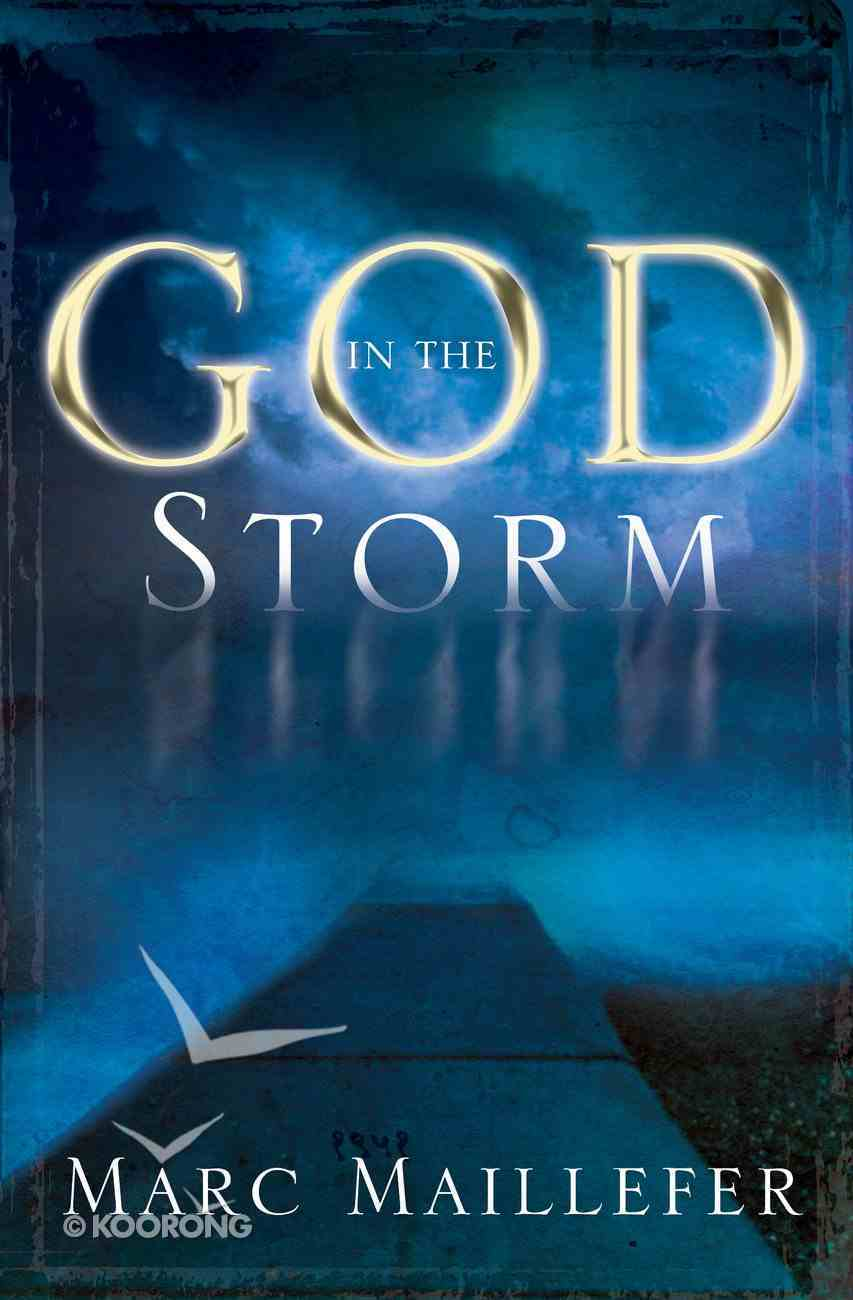 God in the Storm Paperback