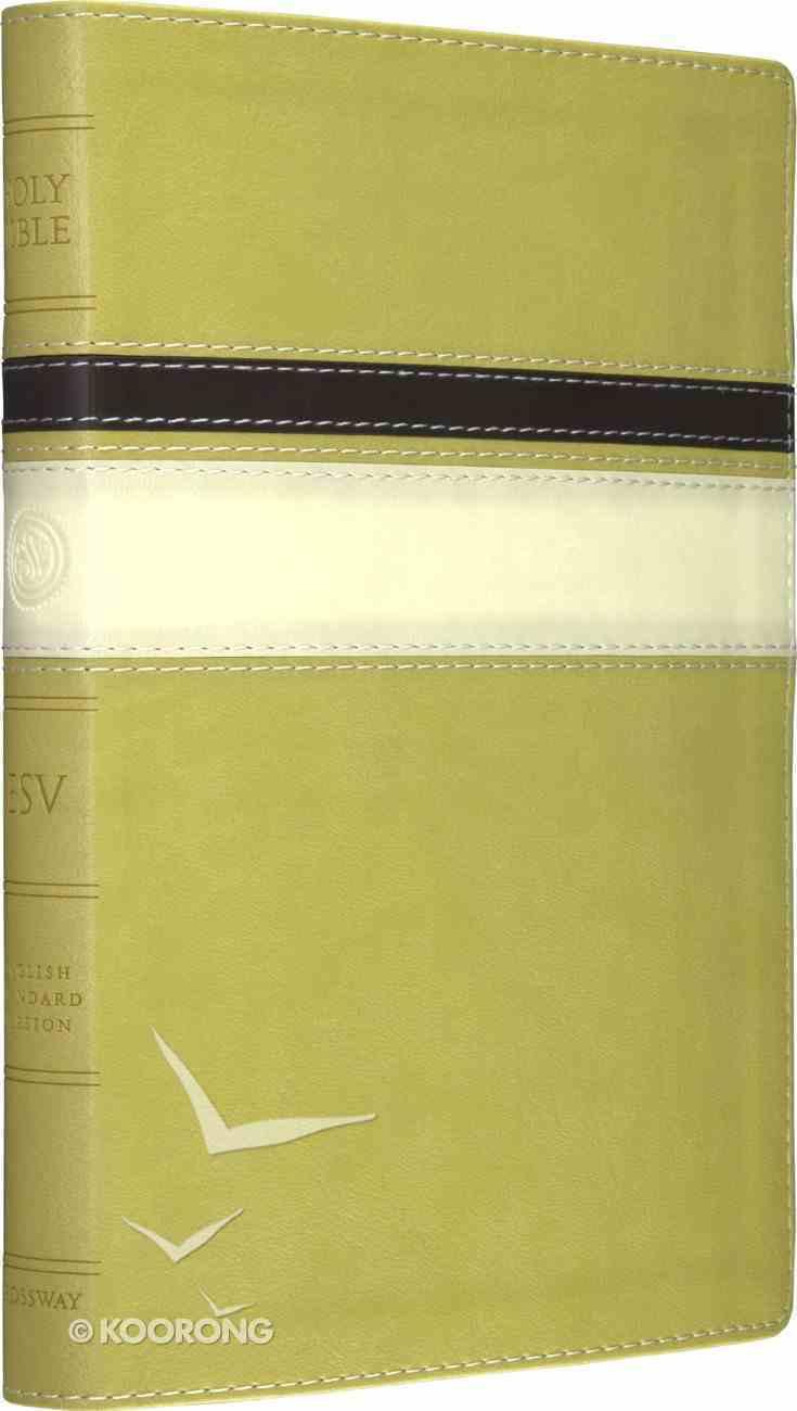 ESV Thinline Bible Springgreen Horizon Design Imitation Leather