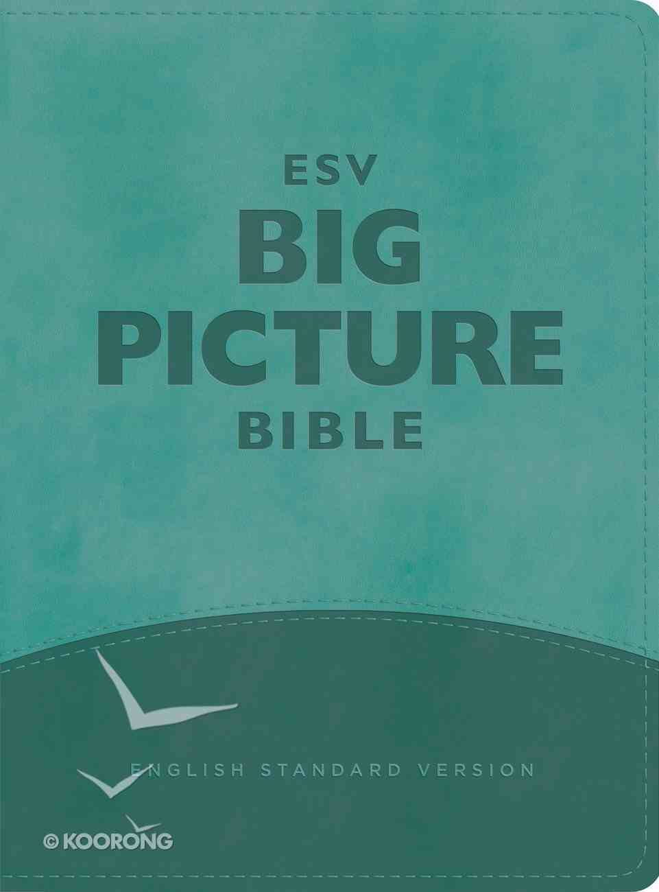 ESV Big Picture Bible Teal (Black Letter Edition) Imitation Leather