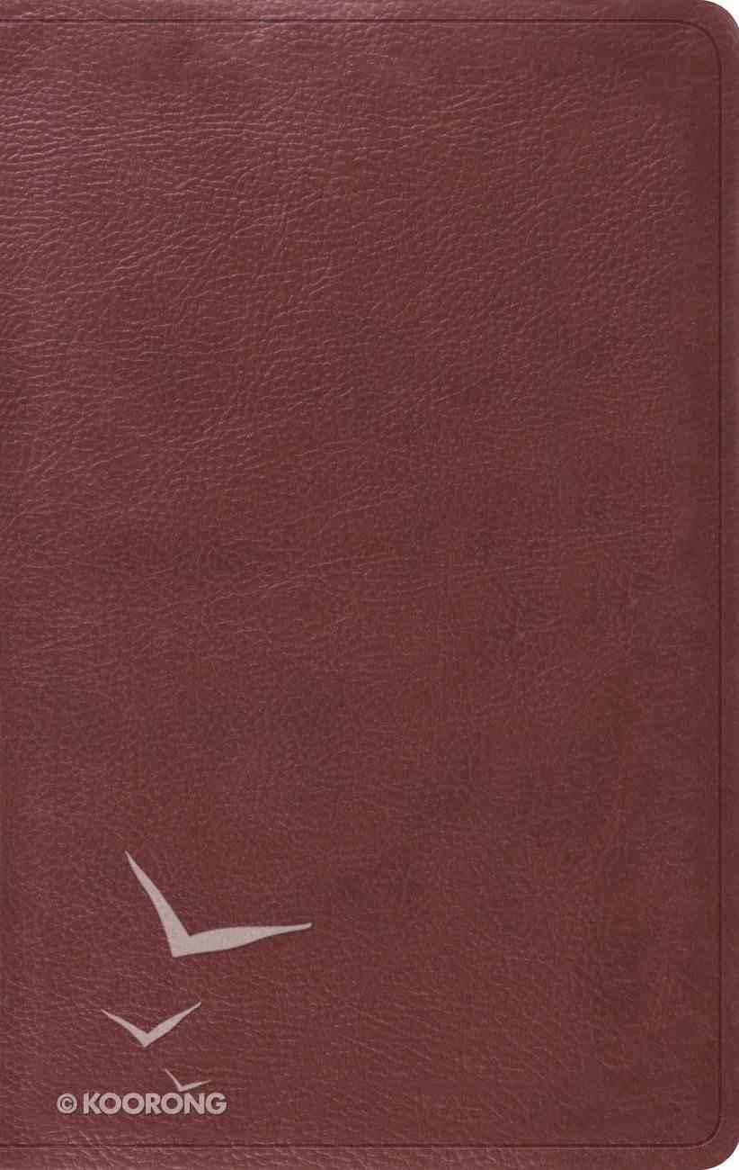 ESV Value Thinline Bible Burgundy (Black Letter Edition) Imitation Leather